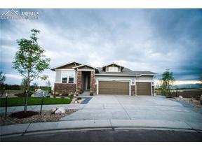Property for sale at 10004 Crews Gulch Court, Colorado Springs,  Colorado 80924