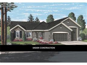 Property for sale at 9967 Henman Terrace, Peyton,  Colorado 80831