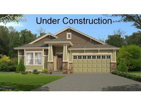 Property for sale at 10222 Triborough Trail, Peyton,  Colorado 80831