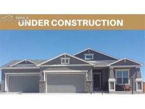 Property for sale at 10023 Henman Terrace, Peyton,  Colorado 80831