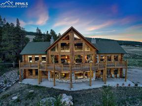 Property for sale at 52516 HIGHWAY 9, Alma,  Colorado 80420