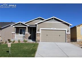 Property for sale at 10667 Hidden Brook Circle, Colorado Springs,  Colorado 80908