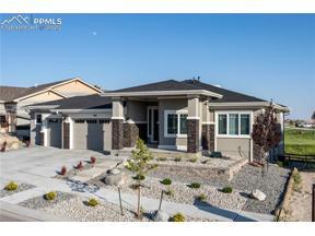 Property for sale at 3831 Horse Gulch Loop, Colorado Springs,  Colorado 80924