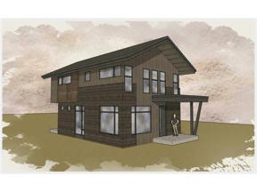 Property for sale at n/a Singleton ROAD, Alma,  CO 80420
