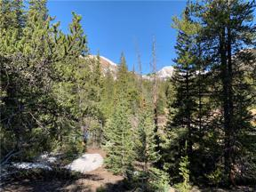 Property for sale at 1141 CO RD 698, Alma,  Colorado 80420