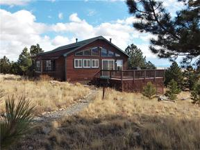 Property for sale at 1301 SHEEP RIDGE ROAD, Fairplay,  Colorado 80440