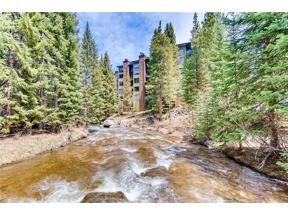 Property for sale at 755 Columbine Road B-104, Breckenridge,  Colorado 80424
