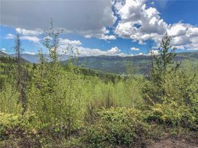 Property for sale at 83 & 125 County Road 414, Granby,  Colorado 80446