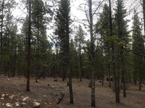 Property for sale at 179 Mt Massive Dr., Twin Lakes,  Colorado 81251