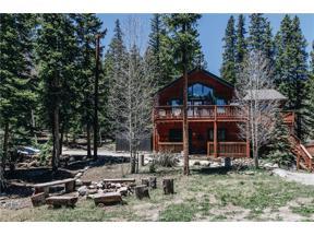 Property for sale at 321 PETERSON DRIVE, Alma,  Colorado 80420