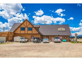 Property for sale at 411 HWY 285, Fairplay,  CO 80440