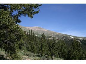 Property for sale at 000 CO 787 ROAD, Alma,  Colorado 80420