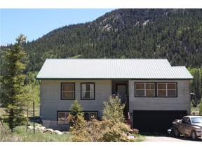 Property for sale at 1194 CO RD 6, Alma,  Colorado 80420