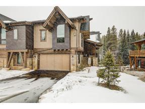 Property for sale at 229 River Park DRIVE, Breckenridge,  Colorado 80424