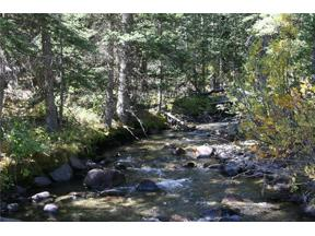 Property for sale at 0 Co Rd 8, Alma,  CO 80420