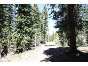 Property for sale at 4096 County Road 4, Alma,  Colorado 80420