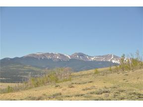 Property for sale at 685 BREAKNECK PASS ROAD, Fairplay,  Colorado 80440