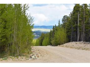 Property for sale at 1344 Deer Trail ROAD, Fairplay,  Colorado 80440