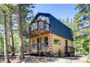 Property for sale at 62 W HILL DRIVE, Alma,  CO 80420