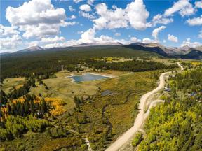 Property for sale at 618 MOSQUITO PASS ROAD, Alma,  Colorado 80420