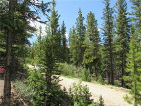 Property for sale at 144 ORPHAN BOY DRIVE, Alma,  CO 80420