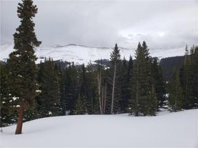Property for sale at 46 Robertson Lane, Breckenridge,  Colorado 80424