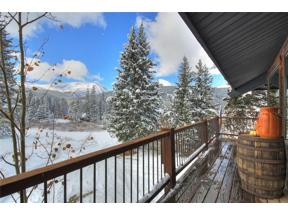 Property for sale at 202 Doris Drive, Breckenridge,  Colorado 80424
