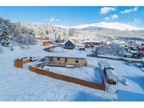 Property for sale at 21 W Second AVENUE, Alma,  CO 80420