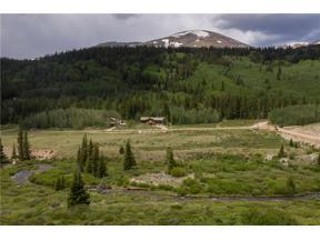 Property for sale at 3247 RIVER DRIVE, Alma,  Colorado 80420