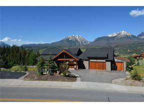 Property for sale at 1174 Bald Eagle ROAD, Silverthorne,  Colorado 80498