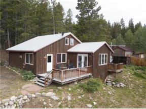 Property for sale at 225 FIRST AVENUE, Alma,  Colorado 80420