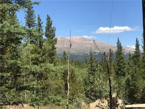 Property for sale at 2036 LAKESIDE DRIVE, Alma,  Colorado 80440