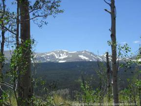 Property for sale at 0 POLARIS ROAD, Alma,  Colorado 80420