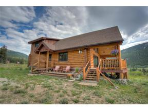 Property for sale at 824 CO RD 6 ROAD, Alma,  Colorado 80420