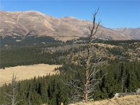 Property for sale at 0 TBD, Alma,  CO 80420