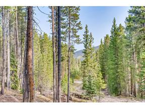Property for sale at 66 Apex Circle, Breckenridge,  Colorado 80424