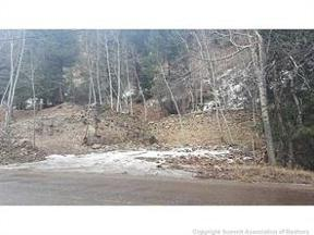 Property for sale at 1320 Fall River Road, Idaho Springs,  Colorado 80452