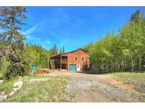 Property for sale at 25 ADVENTURE COURT, Alma,  Colorado 80420