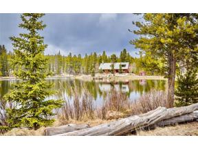 Property for sale at 2487 Lakeside DRIVE, Alma,  CO 80420