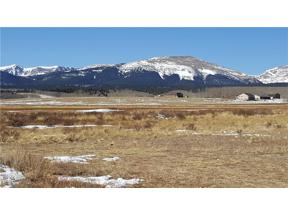 Property for sale at Lot 10 CO RD 18 ROAD, Fairplay,  Colorado 80440