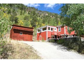Property for sale at 1927 Hwy 91, Leadville,  Colorado 80461