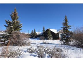 Property for sale at 2620 County Road 4, Leadville,  Colorado 80461