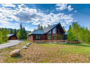 Property for sale at 434 GLISSADE TRAIL, Alma,  CO 80420