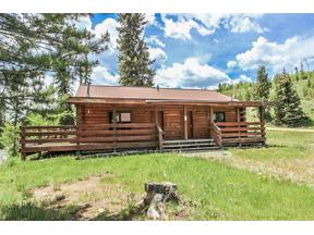 Property for sale at 14 County Road 4573, Grand Lake,  Colorado 80447