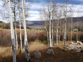 Property for sale at 734 Wild Rose ROAD, Silverthorne,  Colorado 80498