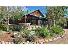 Property for sale at 338 County Road 100, Silverthorne,  Colorado 80498