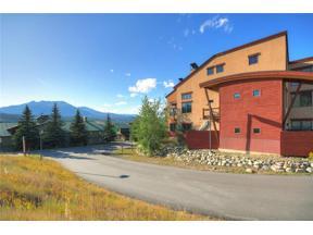 Property for sale at 705 E Anemone Trail 201, Dillon,  Colorado 80435