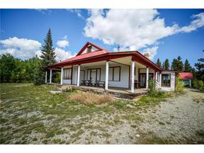 Property for sale at 455 MOSQUITO PASS ROAD, Alma,  Colorado 80420