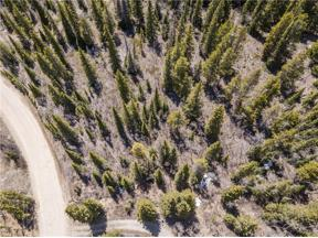 Property for sale at 275 MINE DUMP Road, Alma,  Colorado 80420