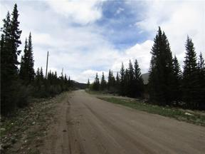 Property for sale at 127 ANSLEY AVENUE, Alma,  CO 80420